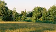 Richtlijnen voor Practice, Puttinggreen & Golfprofessionals