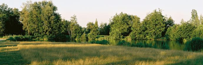Ladies: Salubris invite a non-member golfing friend: Nieuwe Datum
