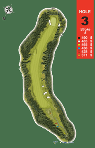 Hole 3 : Red Squirrel (Sciurus Vulgaris)