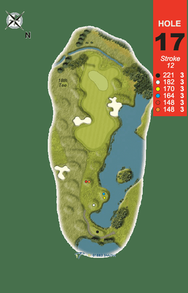 Hole 17 : The Barnacle Goose (Branta Leucopsis)