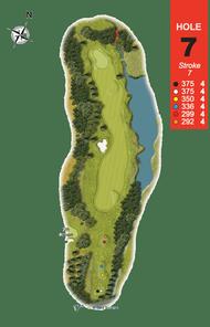 Hole 7 : Primrose (Primula Vulgaris)