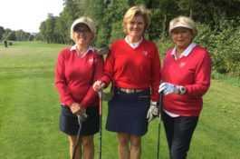 Tweedaags golftripje